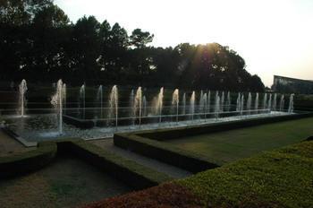 2006_11010088