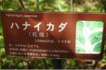 2007_0504_112520