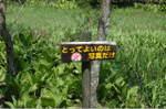 2007_0504_115859