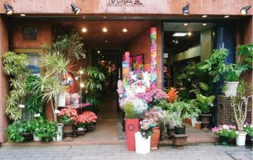 Shop_ginza_05